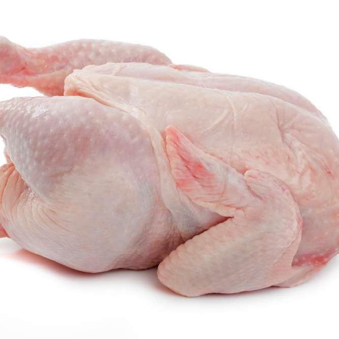 Halal Whole Frozen Chicken